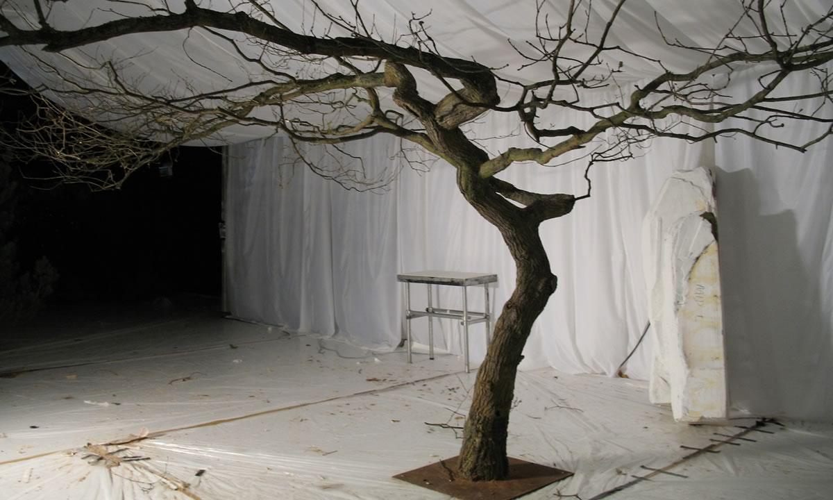 Narnia premiere tree