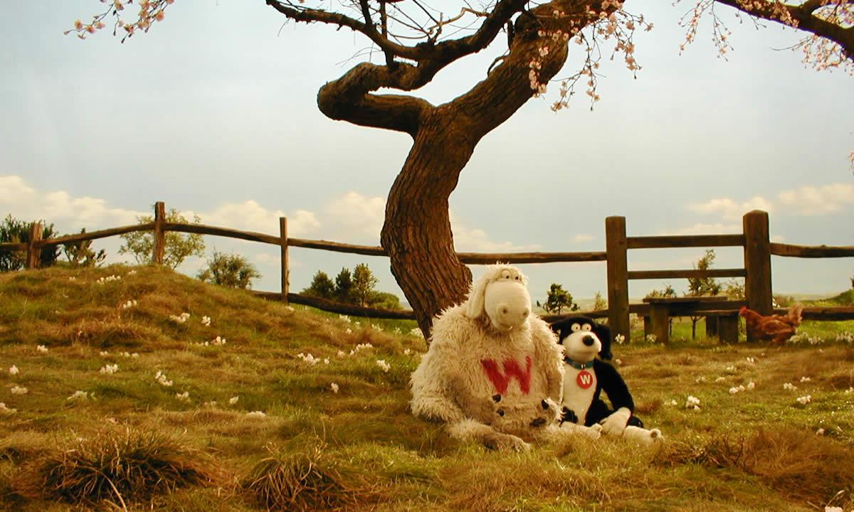 woolworths image 1